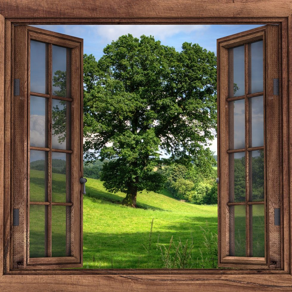 Fenster offen